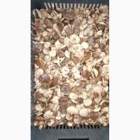 Продам грибы маслята солено-отварные