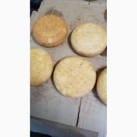 Продажа сыра в ассортименте из Кабардино-Балкарии оптом