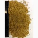 Горчица порошок в/с, 1с, зерно