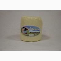 Сыр Адыгейский оптом от производителя