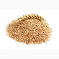 ООО НПП «Зарайские семена» на постоянной основе закупает отруби пшеничные