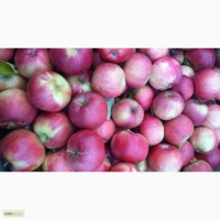 Реализуем Яблоки красных сортов 6