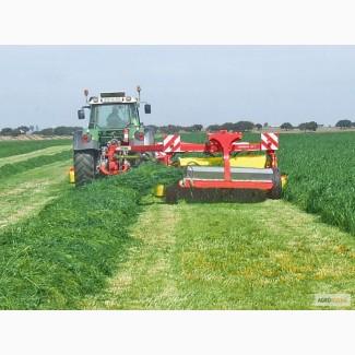 Травосмеси на заказ газонные пастбищные сенокосные
