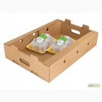 Предложение по курице цены FCA