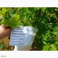 Гиббереллин (GA3) 90% стимулятор роста растений
