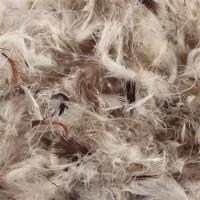 Пух и перо птиц по выгодным ценам