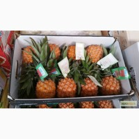 Продаем ананасы из Испании
