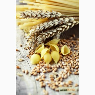 Куплю!Пшеницу Твердую!Нут