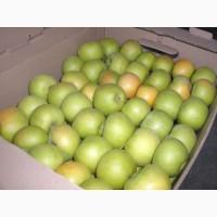 Яблоки свежие от производителя (Крым)