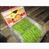 Бананы из Эквадора со склада в СПб