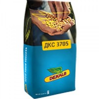 Гибриды кукурузы /ДКС (Декалб) МОНСАНТО (Monsanto)