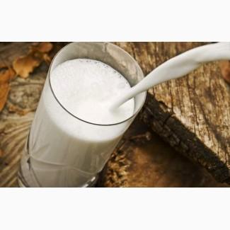Продаем на постоянной основе молоко коровье охлажд. сырое. Самовывоз. От 4-6 тонн в день