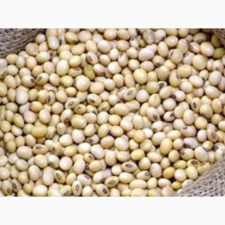 Соя бобы протеин 29