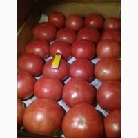 Помидоры розовые тепличные Пинк Парадайз Краснодар, от фермера оптом