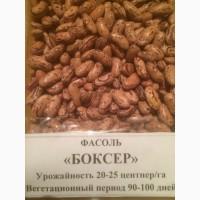 Продам фасоль разных сортов лучшего качества