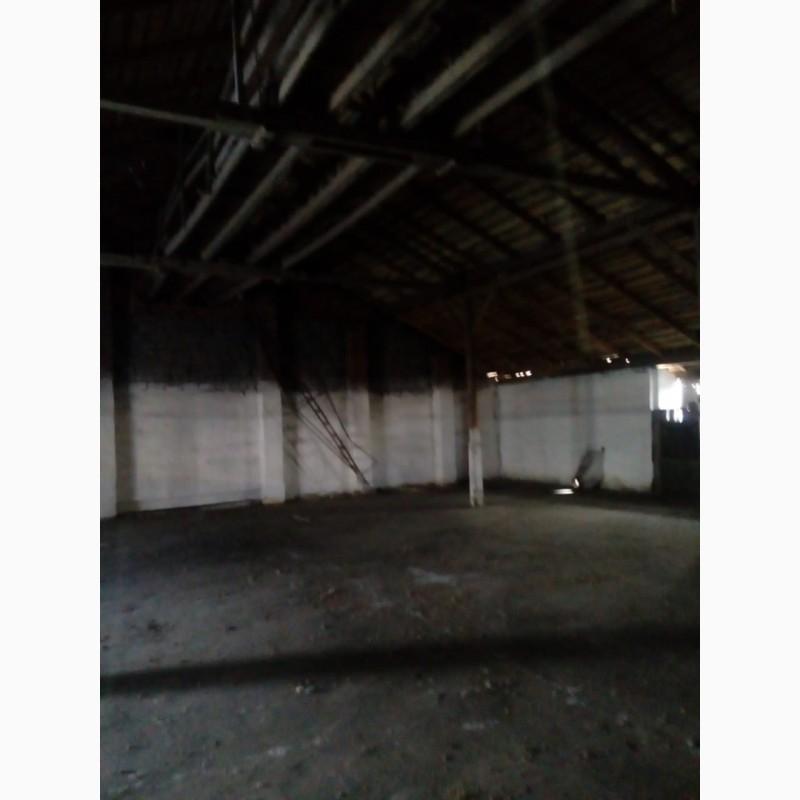 Фото 2. Зерносушилки зерносклады гаражи вспомогателные здания