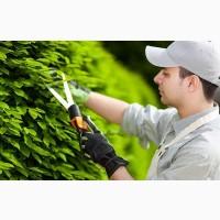 Садовники любые работы в саду и на участке