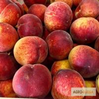 Персики из Сербии