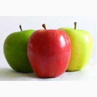 Закупаем Яблоки Красных, Зеленых сортов от 1 до 20 тонн на постоянной основе