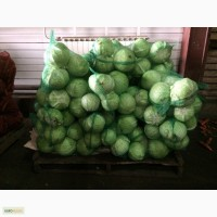 Капуста оптом от 20 тонн в г.Кемерово
