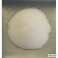 Кинетин ( 98% TС KINETIN ) Кинетин