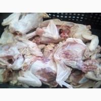 Каркас куриный несушка