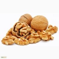 Продам грецкие орехи в скорлупе оптом