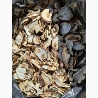Продам белый гриб (сухой)