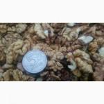 Продам грецкий орех очищенный бабочка