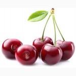 Сок вишневый концентрированный Брикс 65