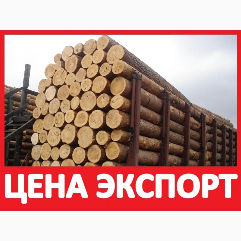 Москва доска объявлений куплю лес кругляк доска частных бесплатных объявлений