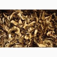 Сублимированные белые грибы