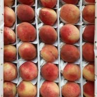 Персик оптом урожай 2020г., от поставщика с доставкой