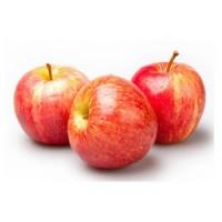 Закупаем свежие Яблоки Гала от 1 до 20 тонн на постоянной основе