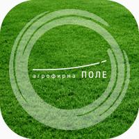 Купить семена газонных трав для озеленения