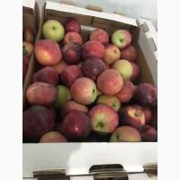 Яблоки разных сортов. Производитель