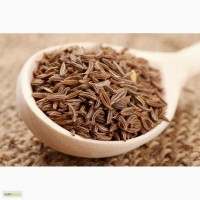 Семена тмина, Египет