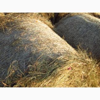 Продам сено в спб высш/кач, доставка по спб, мешки, тюки, рулоны