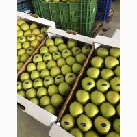 Яблоки Голден Турция