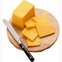 Твердый сыр из творога по ускоренной технологии