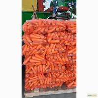 Реализуем морковь