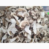 Продам гриб белый сушеный