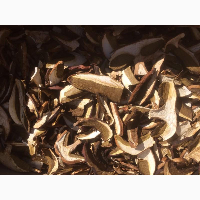 рио сухой древесный белый гриб фото удобные