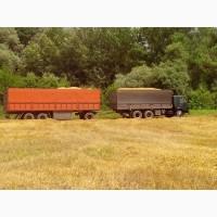 Перевозка зерна с поля