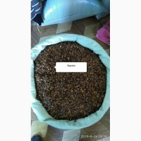 Продам семена арбуза