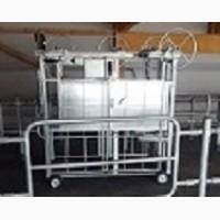 Станок для обработки копыт КРС. Производство и продажа