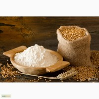 Мука пшеничная хлебопекарная от производителя