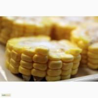 Семена кукурузы по выгодным ценам