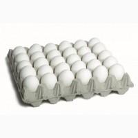 Яйцо куриное 840 коробок
