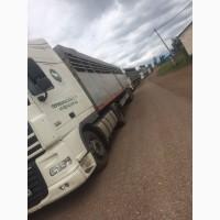 Перевозка скота по России